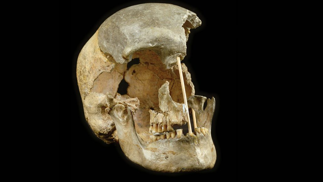 Europe's oldest known humans mated with Neandertals surprisingly often
